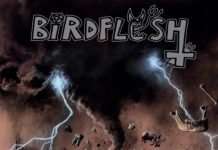 Birdflesh, News, Grindcore, 2019, News, Sweden, Everlasting Spew Records